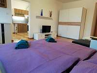 Apartmán Albreit - apartmán k pronajmutí - 11 Jáchymov