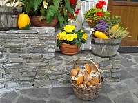 podzimní úroda