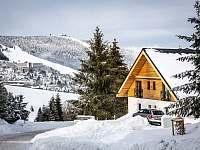 Ski Chalet Klínovec exteriér - apartmán k pronajmutí Loučná pod Klínovcem