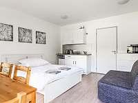 Apartman Klinovec Meadows 3 - ubytování Loučná pod Klínovcem