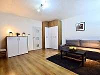 Apartmán Klínovec - apartmán k pronájmu - 3 Jáchymov