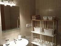 Koupelna se sprchovým koutem č.1 - apartmán k pronájmu Vejprty