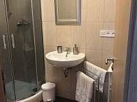 Koupelna se sprchovým koutem č.2 - Vejprty
