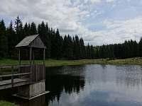 koupání v lese - Český Jiřetín
