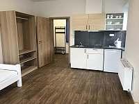 Apartman 1 - ubytování Boží Dar