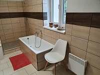 Apartmán 1_koupelna - ubytování Mikulov