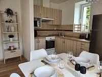 Apartmán 3_kuchyň - k pronájmu Mikulov