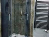 Koupelna - sprchový kout - apartmán k pronájmu Horní Blatná