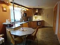 Kuchyň - apartmán ubytování Pila