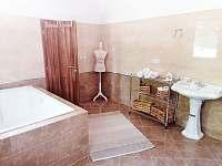 luxusní koupelna v 1NP - vila k pronajmutí Nová Role - Mezirolí
