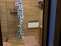 Koupelna+sprcha+wc - pronájem chalupy Hošnice