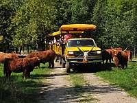 ZOO Chomutov a Safari 8,5km - Hošnice