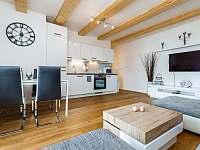 Horský apartmán Temari 5 - pronájem apartmánu - 7 Loučná pod Klínovcem