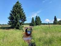 Krásy Flájského potoka - chalupa k pronájmu Moldava - Nové Město