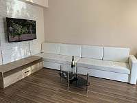 Hnědý pokoj, posezení s TV - Karlovy Vary - Dvory