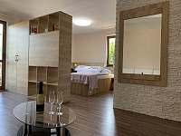 Hnědý pokoj v přízemí - Karlovy Vary - Dvory