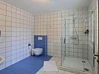 Modrý pokoj ,koupelna - Karlovy Vary - Dvory