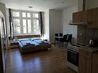 čtyřlůžkový pokoj - apartmán k pronajmutí Jáchymov
