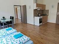 čtyřlůžkový pokoj - apartmán k pronájmu Jáchymov