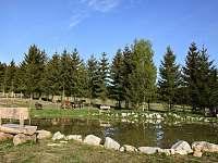 rybníček - Plesná