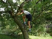 Třešně - chalupa k pronájmu Abertamy