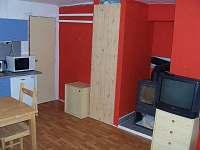 Loučná pod Klínovcem - Apartmán - 4