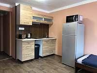 Apartmánový dům - apartmán k pronájmu - 15 Loučná pod Klínovcem