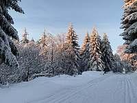 Běžecké stopy - chata k pronájmu Klíny