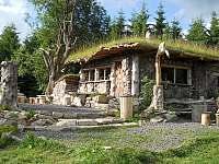 lesní bufet - Červená jáma u Abertam - Hroznětín