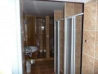 WC, koupelna - chalupa k pronájmu Nové Zvolání - Vejprty