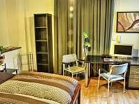Bianka 3 lůžkový pokoj i pro mazlíčky - Ústí nad Labem