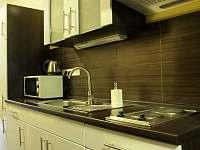 Sidonie - 3 lůžkový apartmán - Ústí nad Labem