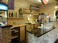 Restaurace - ubytování Loučná pod Klínovcem - Háj