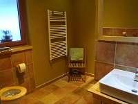 apartman prizemi-koupelna - pronájem Bublava