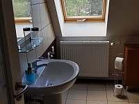 Koupelna - pronájem apartmánu Abertamy