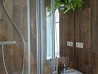 Koupelna - pronájem chalupy Jáchymov