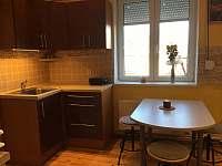 kuchyně - pronájem rekreačního domu Ústí nad Labem