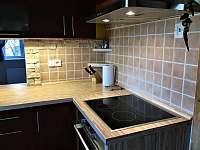 kuchyně - rekreační dům k pronajmutí Ústí nad Labem