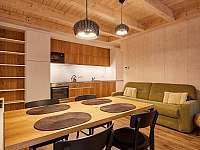 A25 - obývací pokoj s kuchyňským koutem - apartmán k pronajmutí Loučná pod Klínovcem
