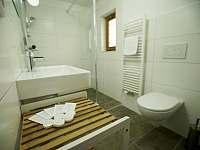 koupelna - pronájem rekreačního domu Hroznětín