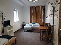 Aprartmán Blanka - apartmán ubytování Nová Role - 9