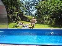 Ubytování s bazénem Skalná - apartmán ubytování Skalná