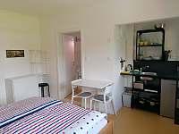 R2 Pokoj pro dva s koupelnou a kuchyňským koutem - apartmán k pronajmutí Horní Blatná