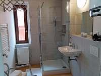 R2 Pokoj pro dva s koupelnou a kuchyňským koutem - Horní Blatná