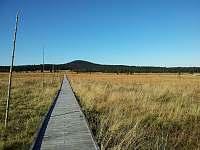 Božídarské rašeliniště 0,5 km -