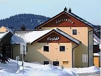 ubytování Ski areál Jáchymov - Náprava v apartmánu na horách - Boží Dar