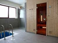 Sauna a ochlazovací bazének - Boží Dar