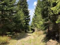 A toto už je cesta zpět po červené turistické značce do Horní Blatné... - apartmán k pronajmutí Boží Dar