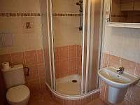 Apartmány Viktoria Klínovec - apartmán k pronájmu - 15 Kovářská