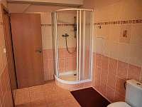 Apartmány Viktoria Klínovec - apartmán - 40 Kovářská